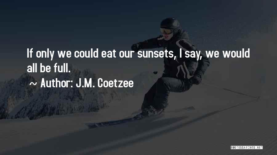 J.M. Coetzee Quotes 790383