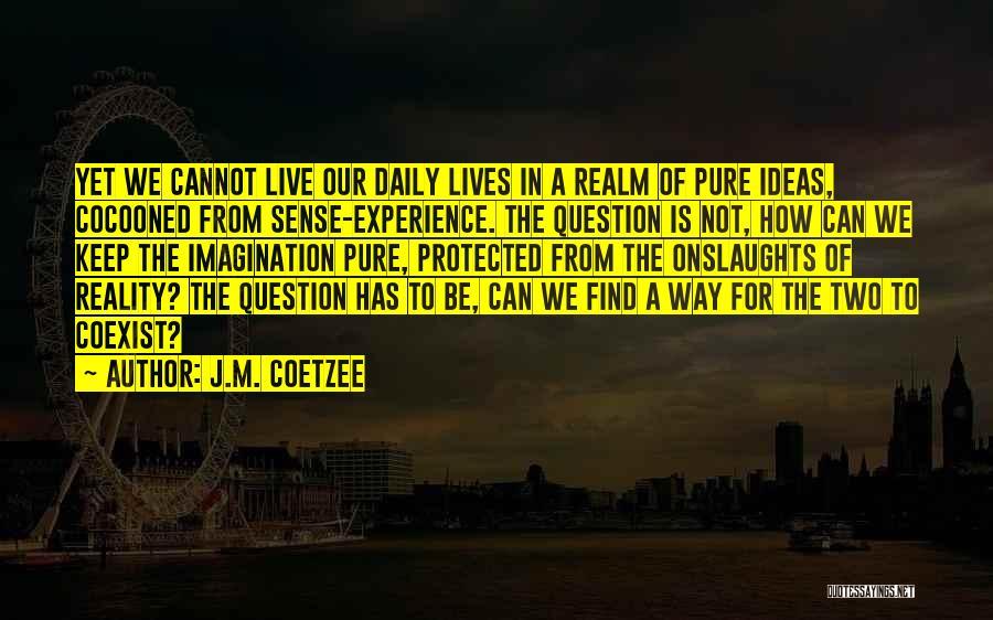J.M. Coetzee Quotes 841968