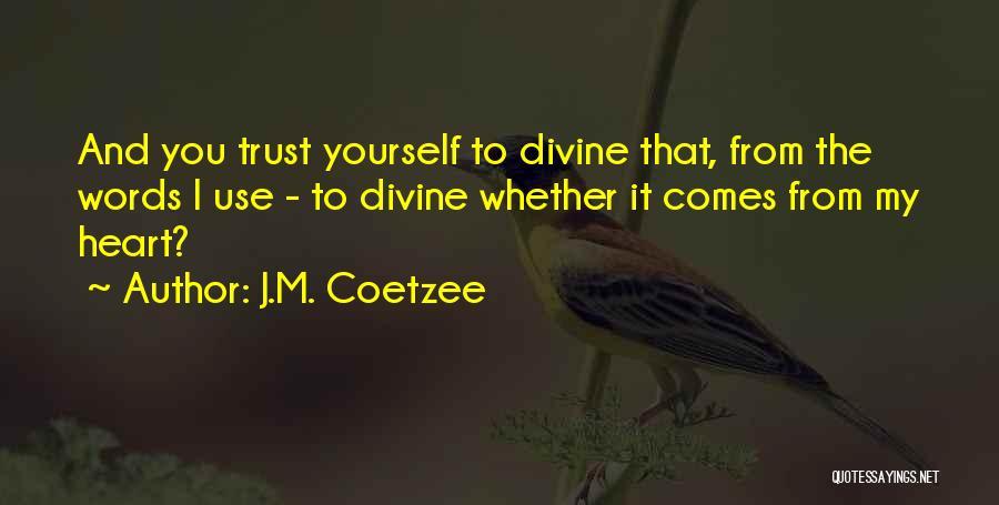 J.M. Coetzee Quotes 920274