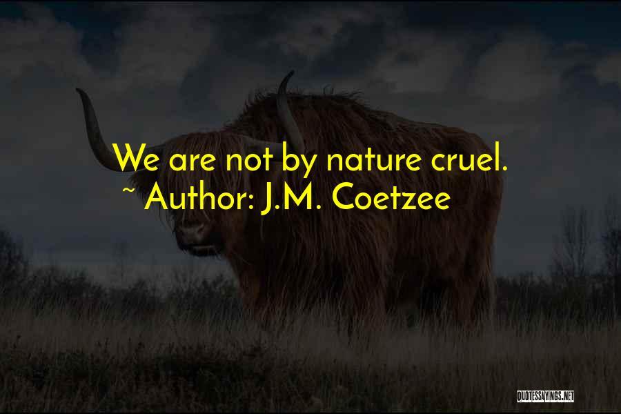 J.M. Coetzee Quotes 944268