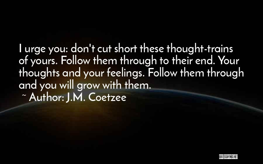 J.M. Coetzee Quotes 96541
