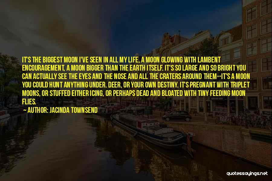 Jacinda Townsend Quotes 2054660