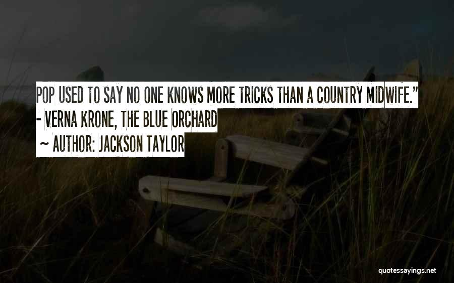 Jackson Taylor Quotes 2017340