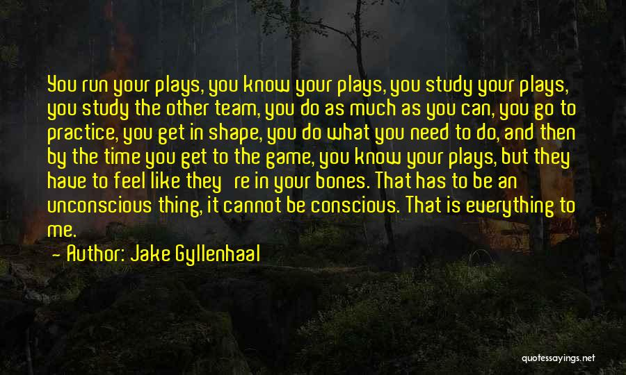 Jake Gyllenhaal Quotes 1863398