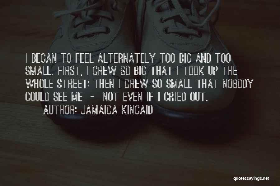 Jamaica Kincaid Quotes 1654440