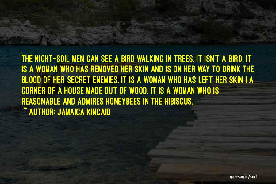 Jamaica Kincaid Quotes 2052625