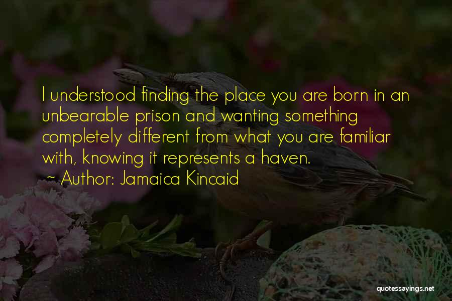 Jamaica Kincaid Quotes 2252073