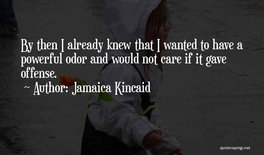 Jamaica Kincaid Quotes 263978