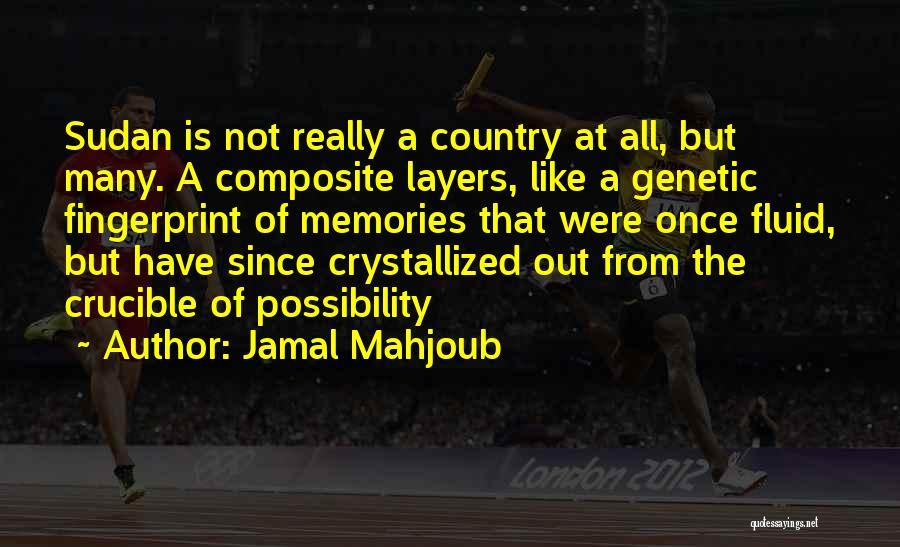 Jamal Mahjoub Quotes 2051000