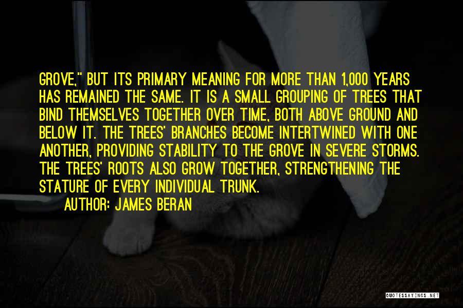 James Beran Quotes 1204161