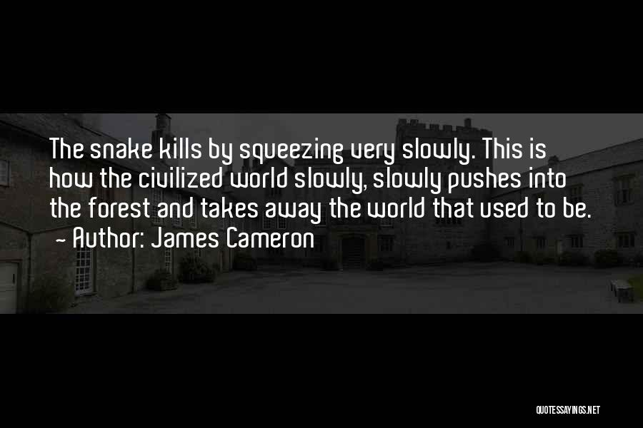 James Cameron Quotes 1257186