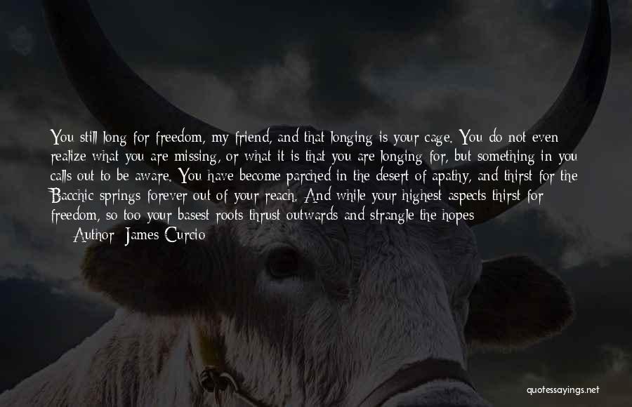 James Curcio Quotes 828827