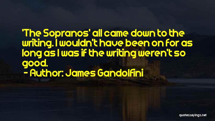 James Gandolfini Quotes 1369210
