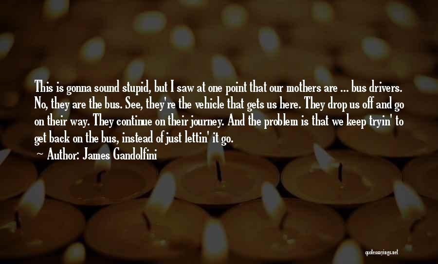 James Gandolfini Quotes 1626471
