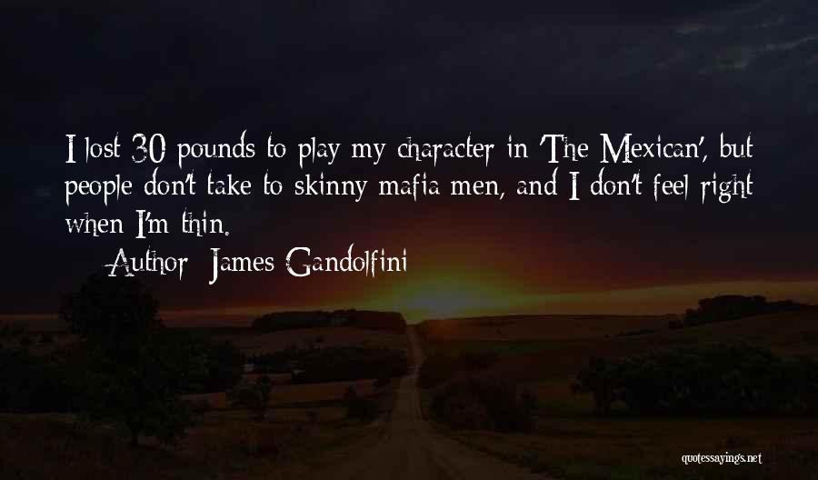James Gandolfini Quotes 347981