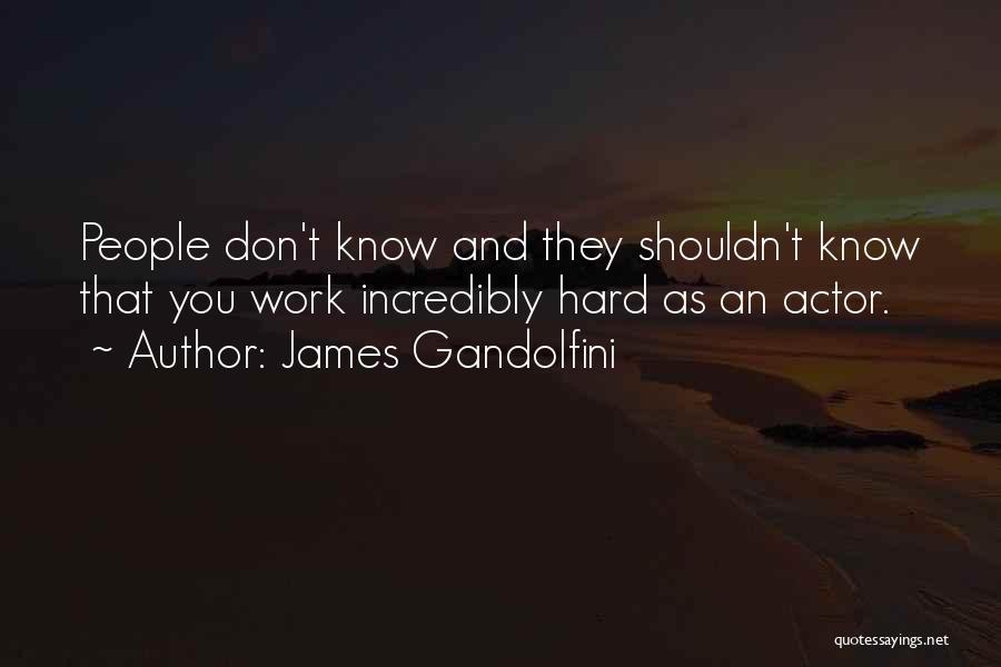James Gandolfini Quotes 507125