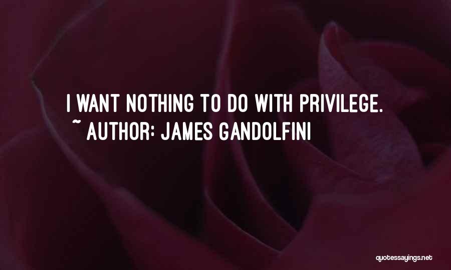 James Gandolfini Quotes 508809