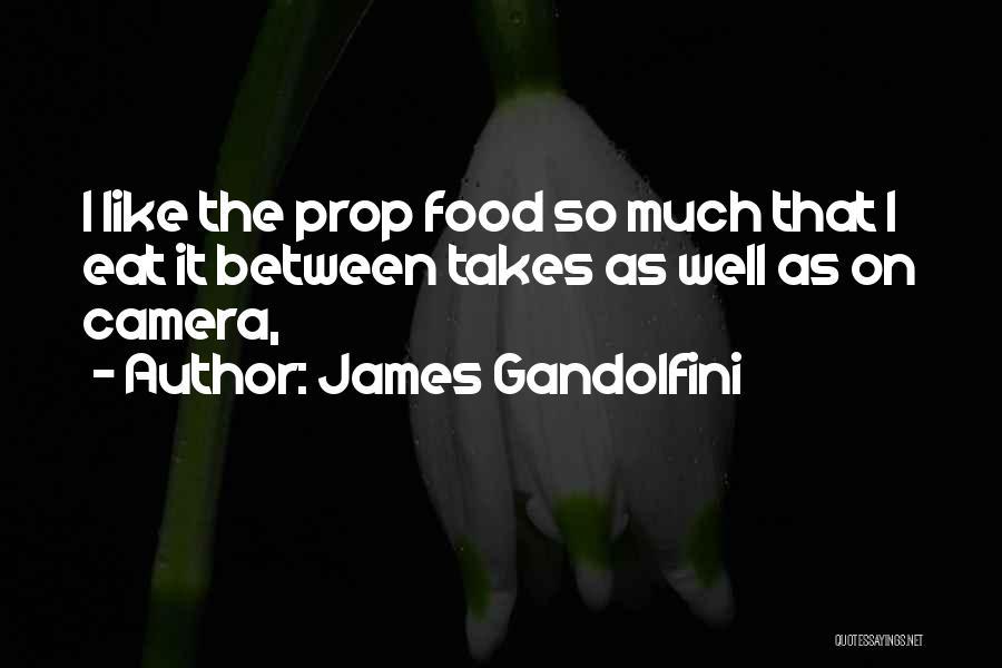 James Gandolfini Quotes 792687
