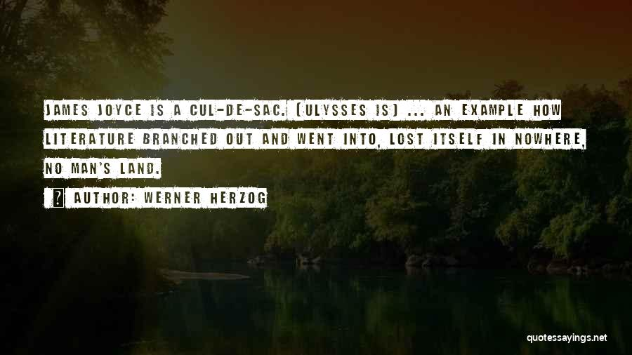 James Joyce Ulysses Quotes By Werner Herzog