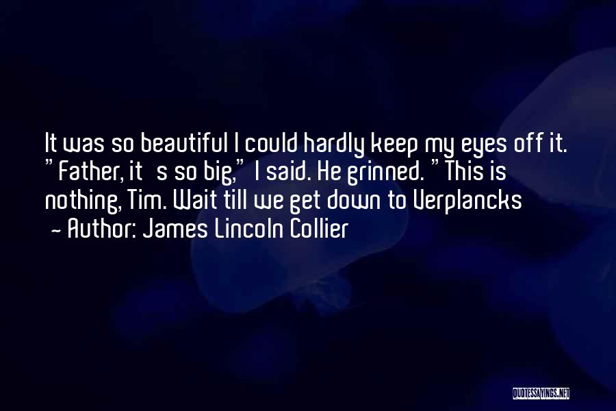 James Lincoln Collier Quotes 1500216