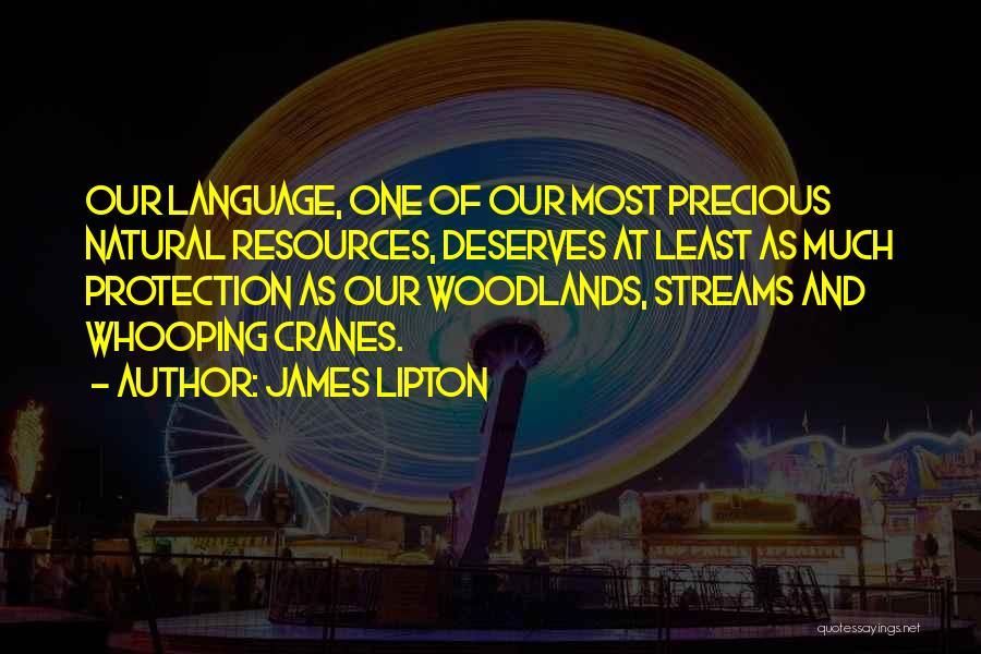 James Lipton Quotes 816359