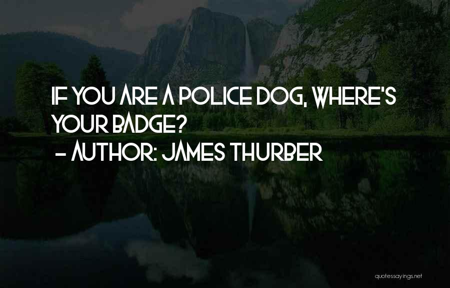 James Thurber Quotes 1238393