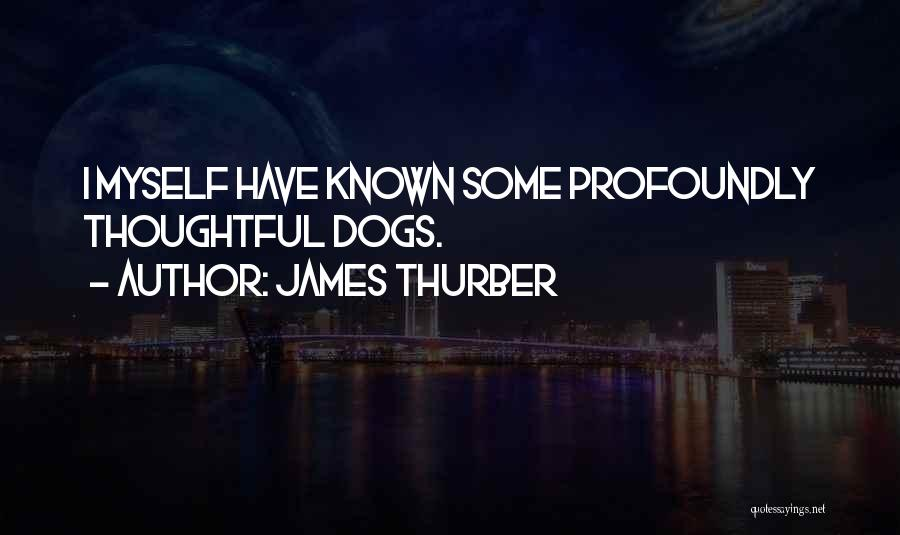 James Thurber Quotes 1606487