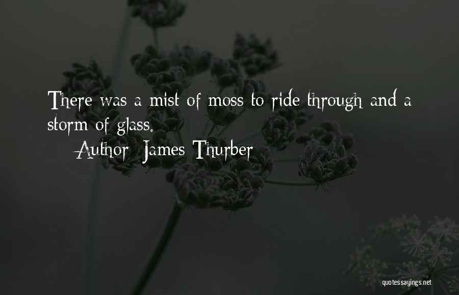 James Thurber Quotes 210349