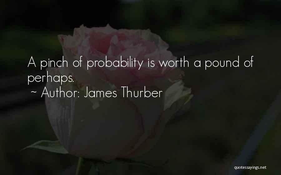 James Thurber Quotes 485281
