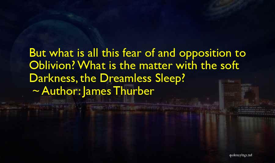 James Thurber Quotes 586842