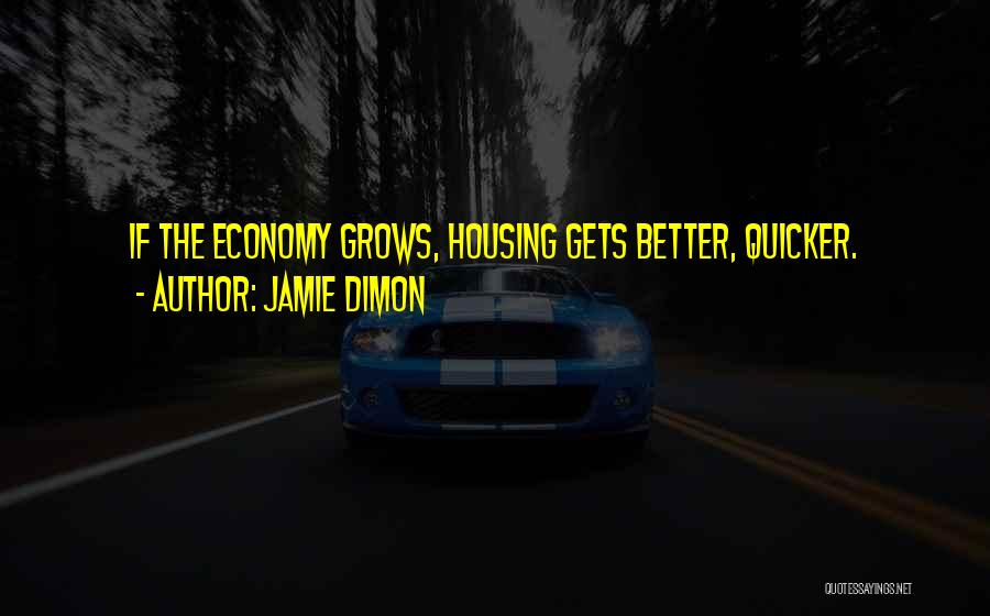 Jamie Dimon Quotes 1744526