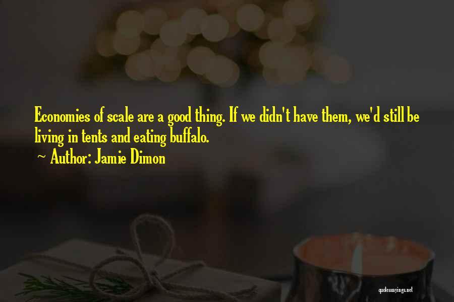 Jamie Dimon Quotes 1783008