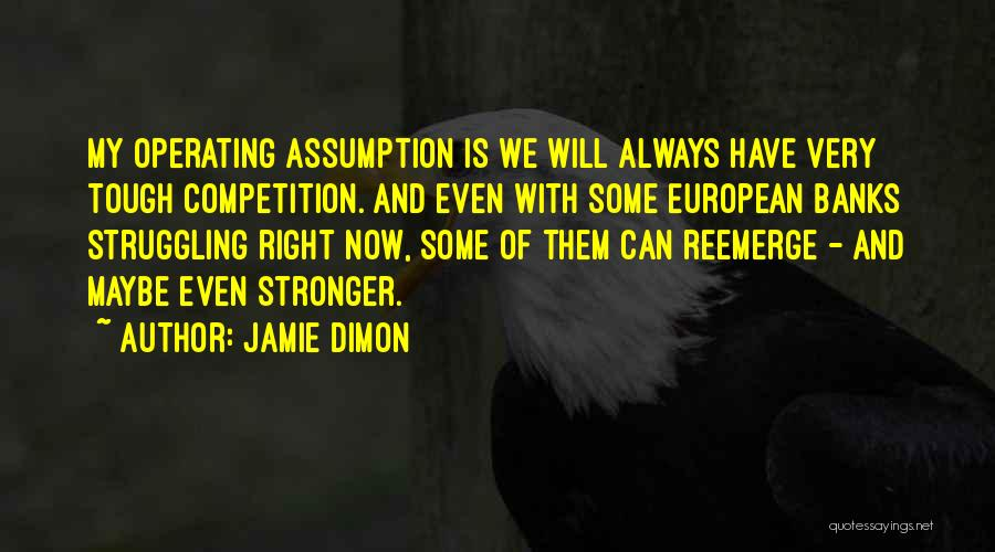 Jamie Dimon Quotes 1926968