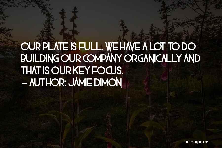 Jamie Dimon Quotes 728835