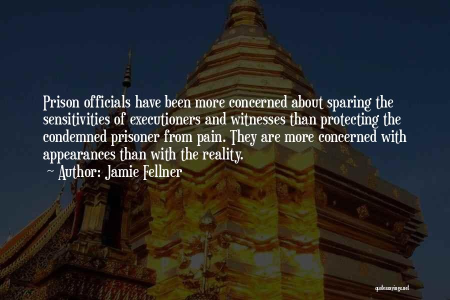 Jamie Fellner Quotes 1400126