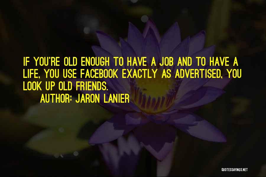 Jaron Lanier Quotes 1580430