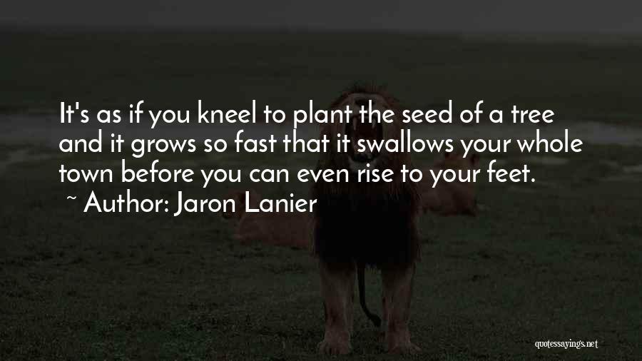 Jaron Lanier Quotes 258271