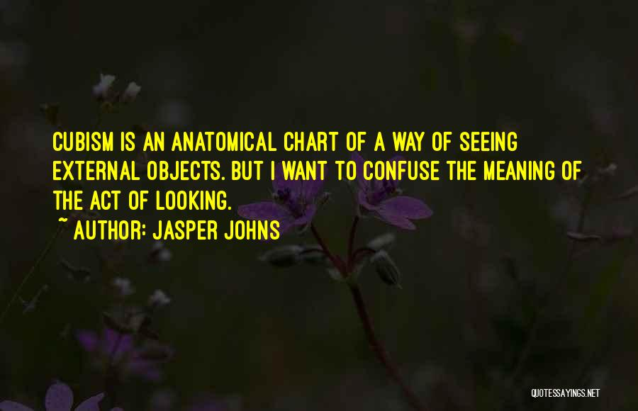 Jasper Johns Quotes 394029