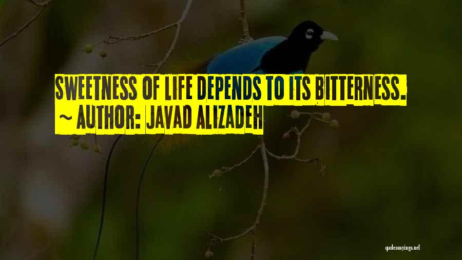 Javad Alizadeh Quotes 591560
