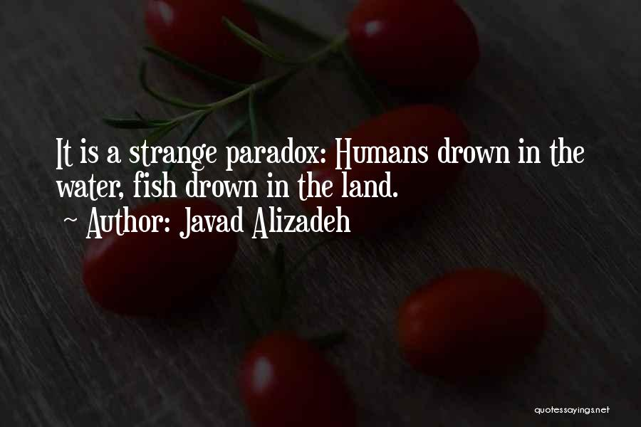 Javad Alizadeh Quotes 839989