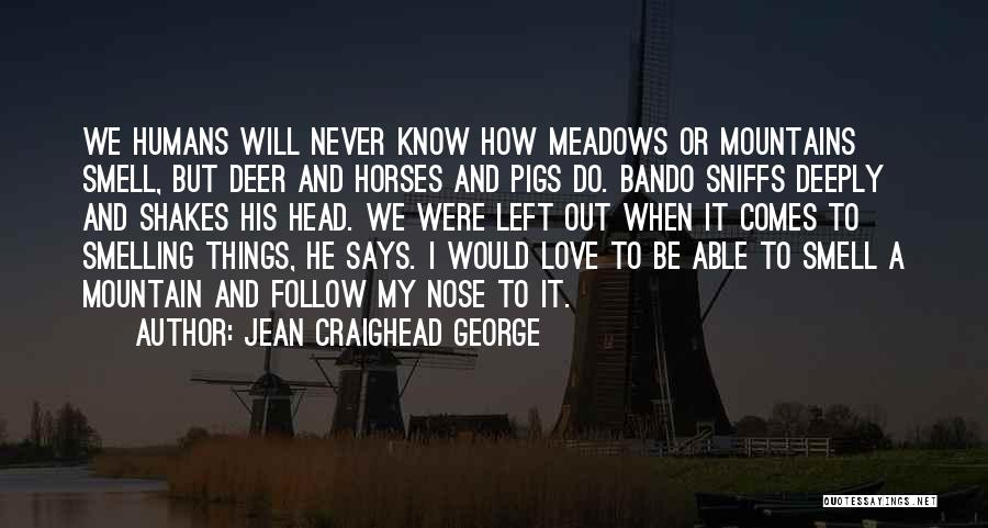 Jean Craighead George Quotes 644669