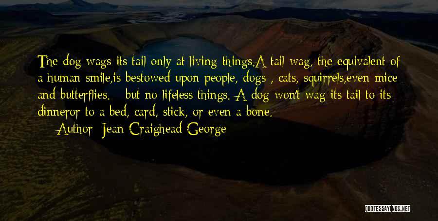 Jean Craighead George Quotes 722550