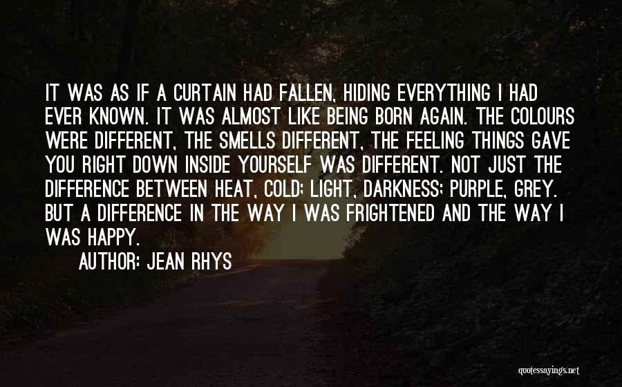 Jean Rhys Quotes 1686010