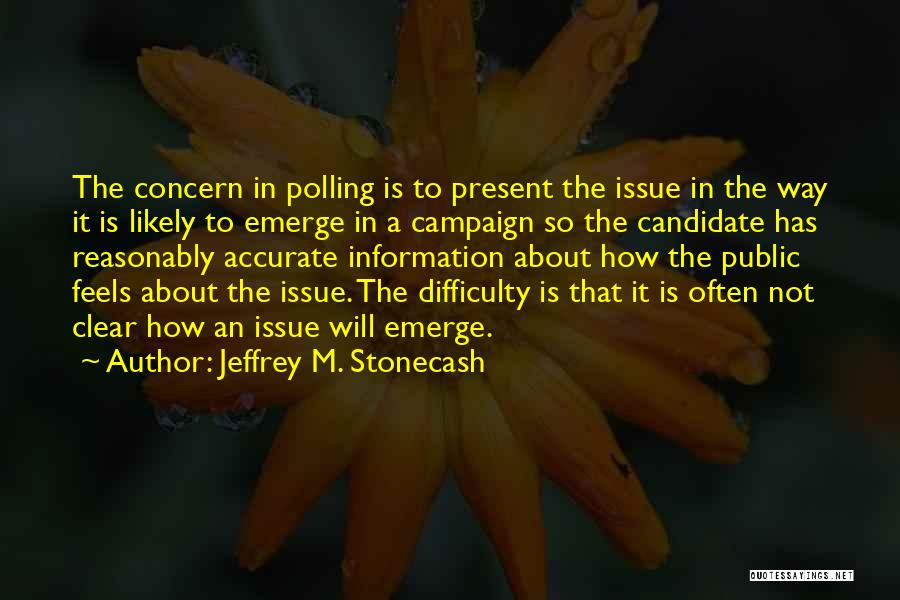 Jeffrey M. Stonecash Quotes 1867253
