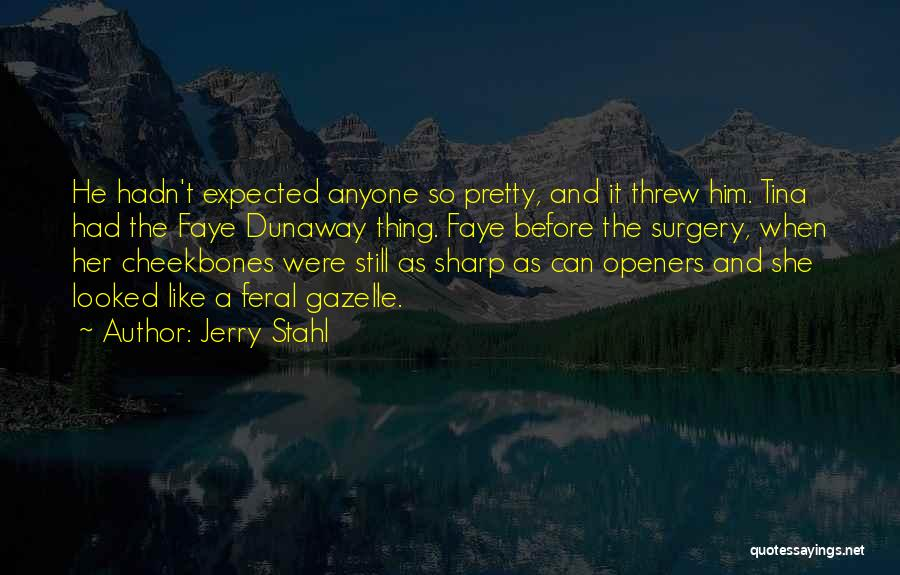 Jerry Stahl Quotes 2201266