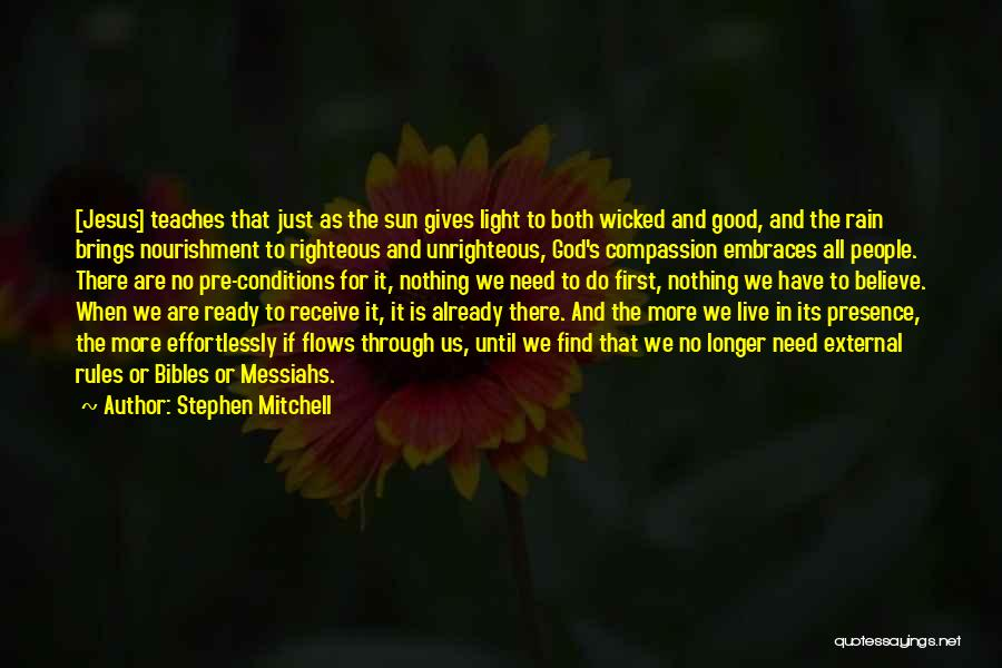 Jesus And Light Quotes By Stephen Mitchell