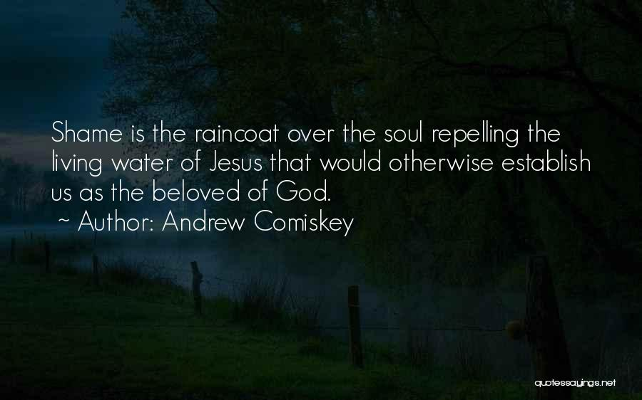 Jesus As The Living Water Quotes By Andrew Comiskey