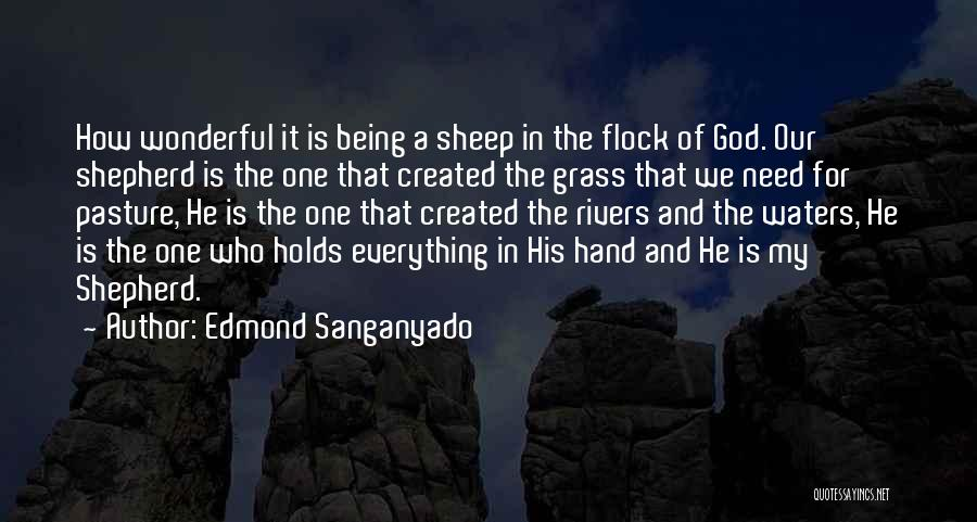 Jesus The Good Shepherd Quotes By Edmond Sanganyado