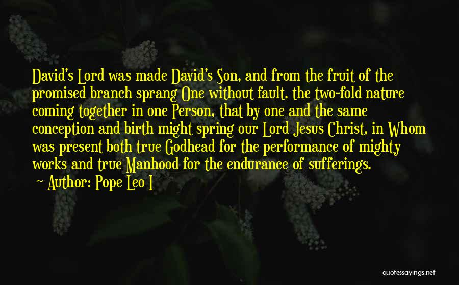 Jesus's Birth Quotes By Pope Leo I