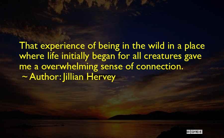 Jillian Hervey Quotes 432109